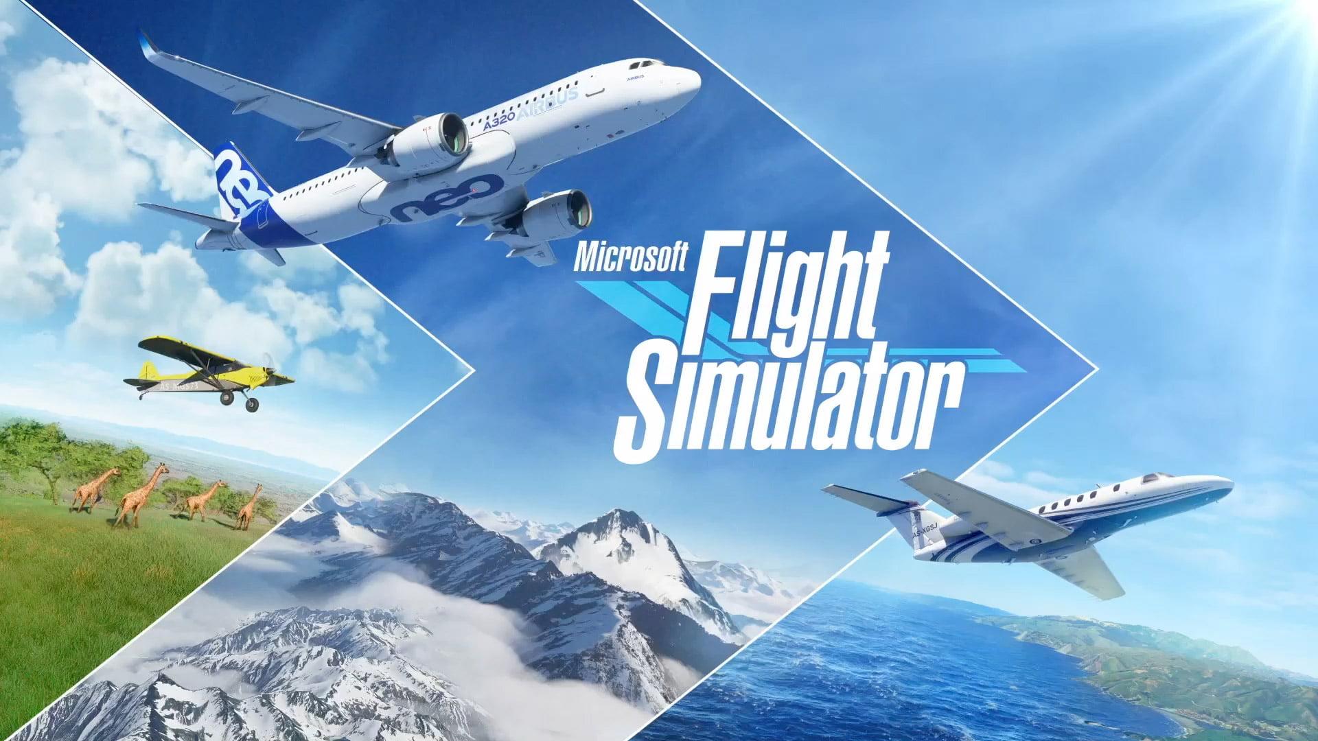 Microsoft Flight Simulator BR Steam Gift